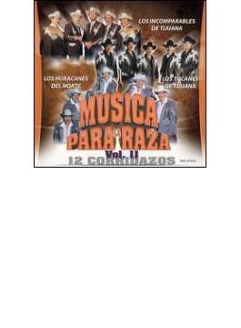 Musica Pa La Raza Vol.11