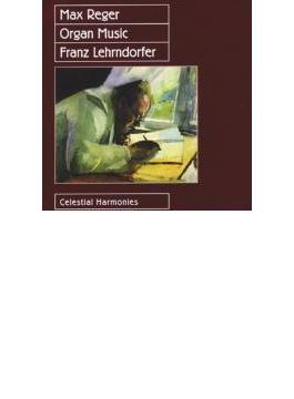 Organ Works: Lehrndorfer