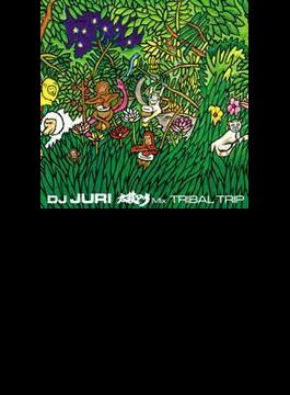太鼓dub Mix: Tribal Trip (+dvd)
