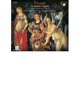 協奏曲集『和声とインヴェンションの試み』全曲 カサッツァ(vn)ラ・マニフィカ・コムニタ(2CD)