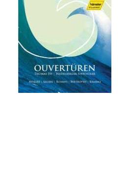 超過激! ハイデルベルクのニュー・イヤー・コンサート~話題のファイによる序曲ライヴ