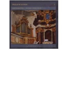 Orgeln In Sachsen Vol.3: Rieger