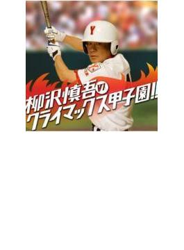 柳沢慎吾のクライマックス甲子園!!