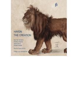 『天地創造』英語版 シュタインエッカー&ムジカ・セクロルム(2CD)