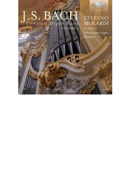 オルガン作品全集第2巻 ステファノ・モラルディ(4CD)