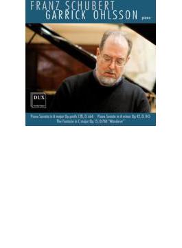 Piano Sonata, 13, 16, Wanderer-fantasie: Ohlsson