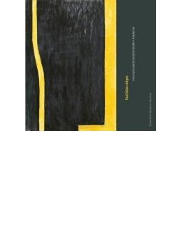 『ユークリッド・アビス』 インターナショナル・アンサンブル・モデルン・アカデミー2012/13