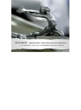 アルペジョーネ・ソナタ(弦楽オーケストラ伴奏版)、『死と乙女』(マーラー編曲弦楽オケ版) ピオヴァーノ、聖チェチーリア国立音楽院弦楽合奏団
