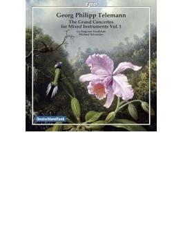 様々な楽器のための大協奏曲集第1集 M.シュナイダー&ラ・スタジオーネ・フランクフルト