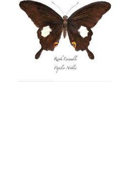 Papilio Noblei