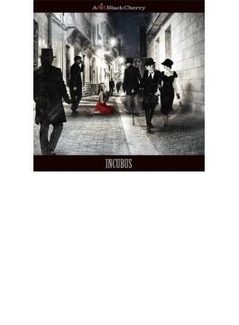 INCUBUS (+DVD)【初回限定盤】