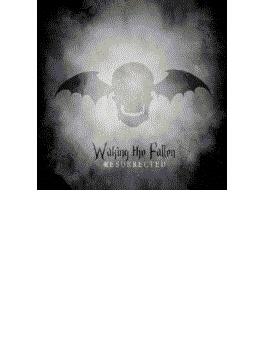 Waking The Fallen (+dvd)(+flag)(Ltd)