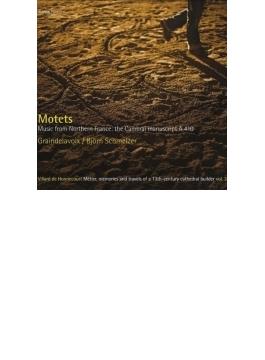 『モテット集~北フランス、カンブレーのマニュスクリプトA410からの音楽』 シュメルツァー&グランドラヴォワ