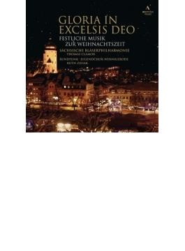 『グロリア・イン・エクセルシス・デオ~クリスマス・ソング集』 ヴェルニゲローデ青少年合唱団