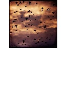 夕陽へのファンファーレ