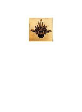 Steve Conte Nyc Album