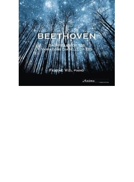 ディアベリ変奏曲、6つのバガテル フェレンツ・ヴィジ