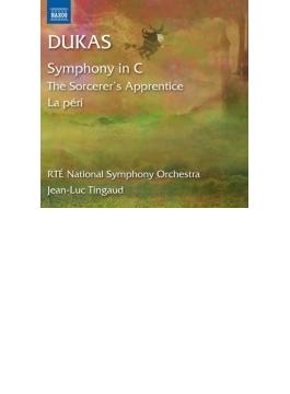 交響曲、『魔法使いの弟子』、『ラ・ペリ』 タンゴー&アイルランド国立響