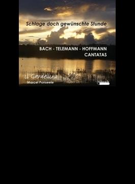 Cantata, 27, 55, 159, : Ponseele / Il Gardellino +telemann, G.m.hoffmann