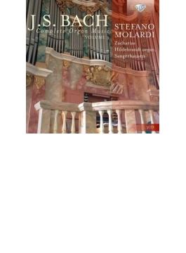 オルガン作品全集第3巻 ステファノ・モラルディ(3CD)