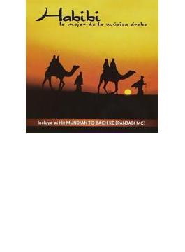 Habibi-lo Mejor De La Musica Arabe