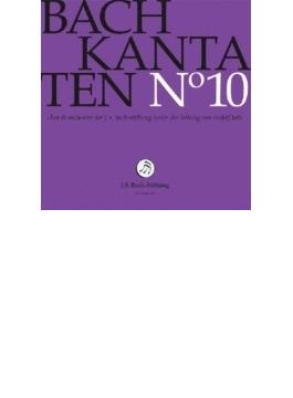 カンタータ集第10集~第66、84、111番 ルドルフ・ルッツ&バッハ財団管弦楽団