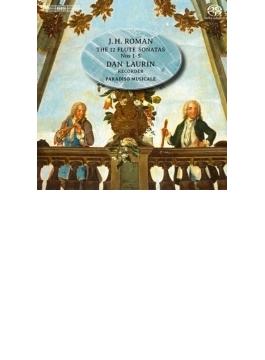 フルートと通奏低音のためのソナタ集 ダン・ラウリン(リコーダー)、パラディソ・ムジカーレ