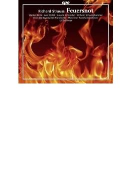 歌劇『炎の災い』全曲 シルマー&ミュンヘン放送管、アイヒェ、S.シュナイダー、他(2014 ステレオ)(2CD)