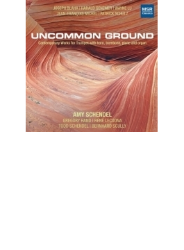 『珍しい土地~トランペットを含む現代室内楽曲集』 エイミー・シェンデル