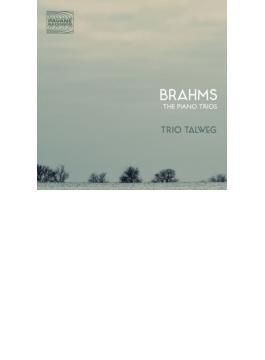Piano Trio, 1, 2, 3, : Trio Talwegroad Movies-j.adams