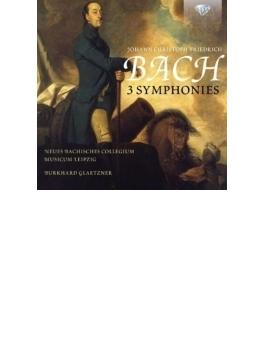 交響曲集 グレツナー&ライプツィヒ新バッハ・コレギウム・ムジクム