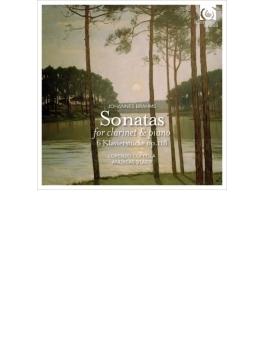 クラリネット・ソナタ第1番、第2番、6つのピアノ小品 L.コッポラ、シュタイアー