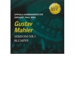 交響曲第1番『巨人』(室内楽版)、花の章 パウル・マギ&ウプサラ室内管弦楽団