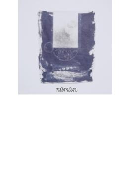 Numun