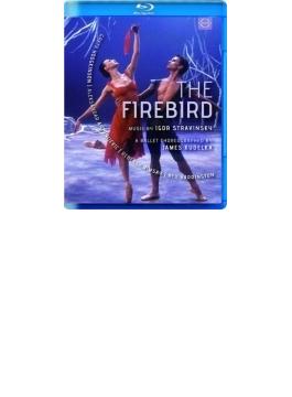 バレエ『火の鳥』 クデルカ振付、カナダ・ナショナル・バレエ、ホジキンソン、アントニエヴィッチ(演奏:ゲルギエフ&マリインスキー歌劇場管)(2002)