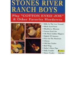Play Cotton Eyed Joe & Other Hits