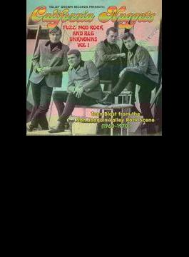 California Nuggets: Fuzz Mod Rock & R & B Unknowns Vol.1
