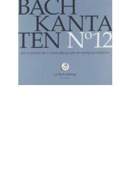 カンタータ集第12集~第33、70、151番 ルドルフ・ルッツ&バッハ財団管弦楽団