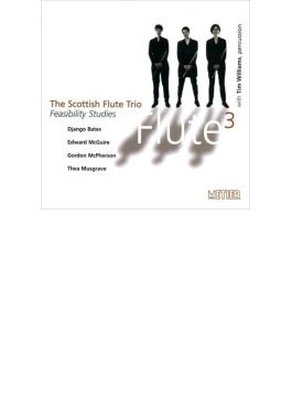 Feasibility Studies: The Scottish Flute Trio