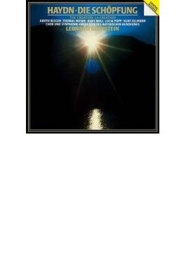 『天地創造』 バーンスタイン&バイエルン放送交響楽団、バイエルン放送合唱団(2CD)