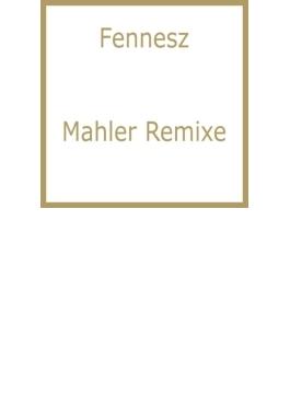 Mahler Remixe