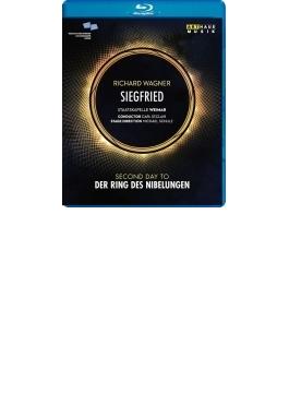 『ジークフリート』全曲 シュルツ演出、カール・セント・クレア&シュターツカペレ・ワイマール、ファン・ハル、メーヴェス、他(2008 ステレオ)(日本語字幕付)