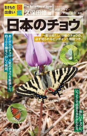 日本のチョウの詳細を見る