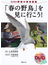 「春の野鳥」を見に行こう! DVD付季節の野鳥図鑑