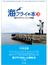 海フライの本 3 海のフライフィッシング教書