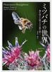 ミツバチの世界 個を超えた驚きの行動を解く