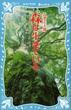 森は生きている 新装版(講談社青い鳥文庫 )
