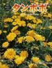 タンポポ 風でたねを飛ばす植物