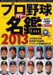 プロ野球カラー名鑑 2013(B.B.MOOK)