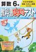 教科書ぴったりテスト算数 大日本図書版新版たのしい算数完全準拠 2015−6年